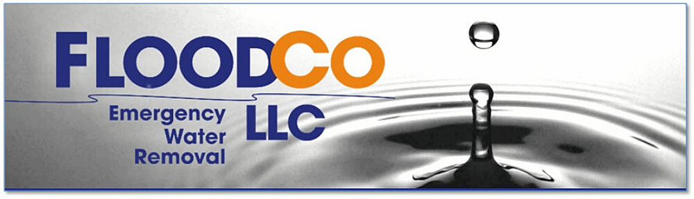 Flood Co LLC Water Mitigation Blog